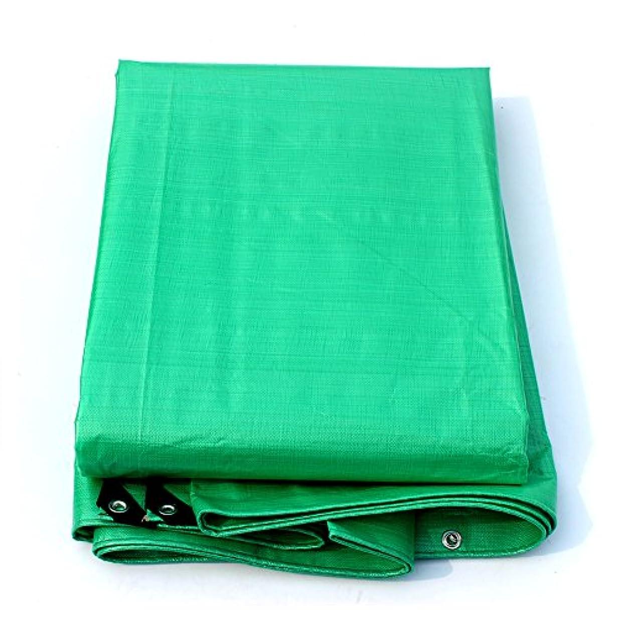 メダリスト超越する動揺させるテント、厚い防雨布のプラスチックの布をプラスして雨の覆いを防いで日よけの布の車の蓋を遮って、最大の10 x 12 m