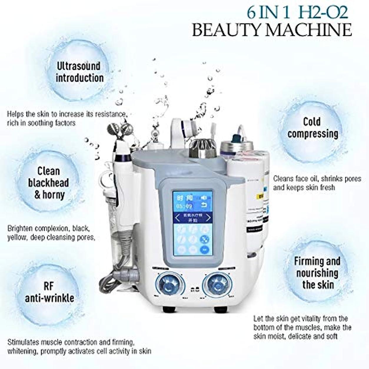 動詞リーズ高齢者6 in 1フェイシャル水素スパマシン、水素酸素超マイクロバブルと水スプレー酸素皮膚剥離装置、皮膚水ハイドロ皮膚剥離機