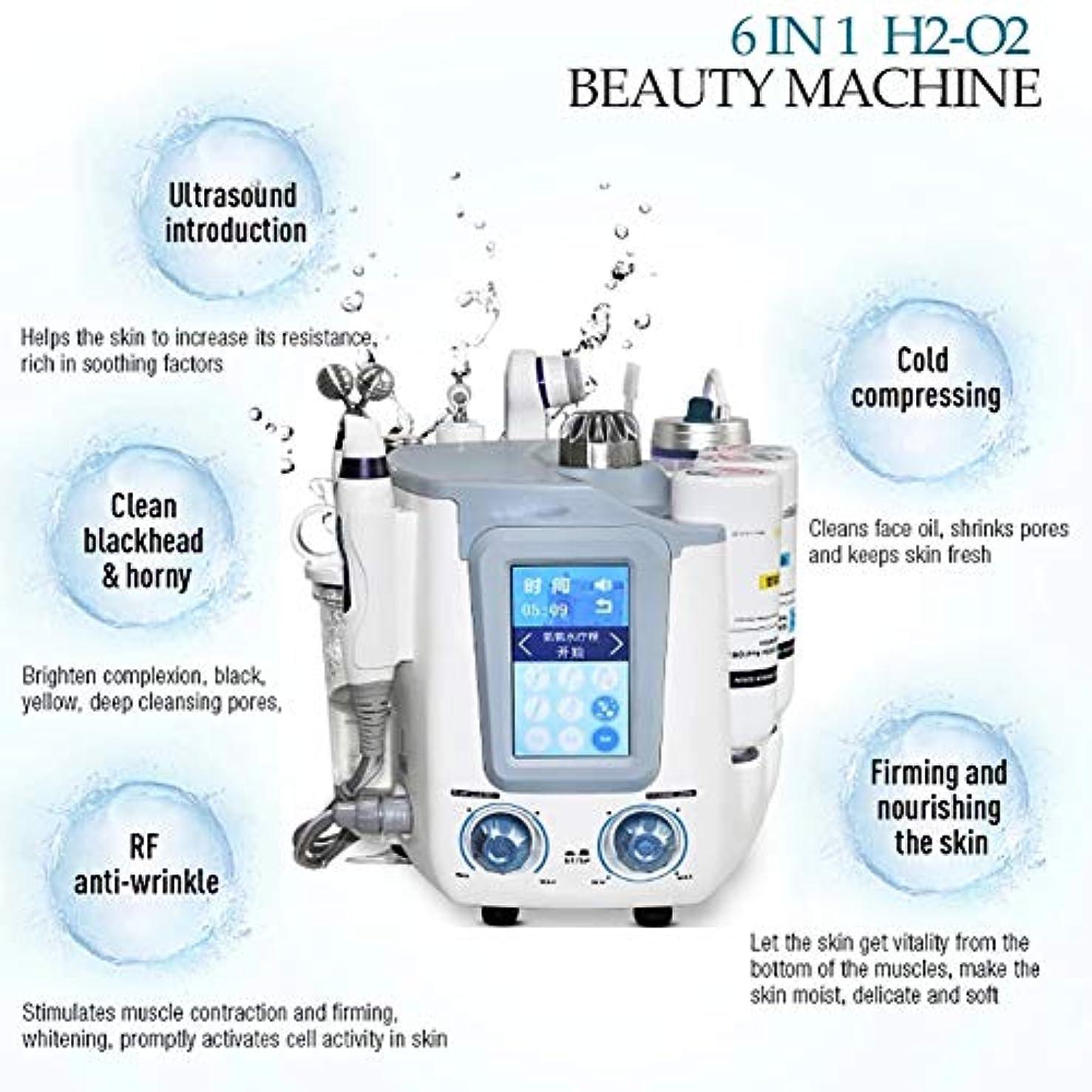 ペパーミントタンパク質騒乱6 in 1フェイシャル水素スパマシン、水素酸素超マイクロバブルと水スプレー酸素皮膚剥離装置、皮膚水ハイドロ皮膚剥離機