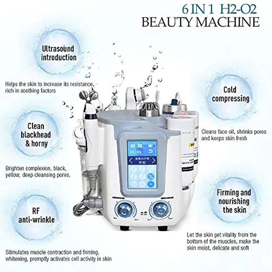 解き明かすサリー人工6 in 1フェイシャル水素スパマシン、水素酸素超マイクロバブルと水スプレー酸素皮膚剥離装置、皮膚水ハイドロ皮膚剥離機