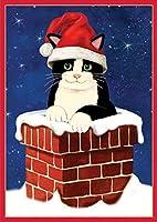 Entertaining with Caspari Cat in Chimney Christmas Cards (Box of 16) by Entertaining with Caspari