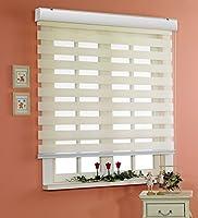 サイズ オーダーメイド, [Winsharp Basic, ivory, W 160 x H 120 (CM)] 調光ロールアップ スクリーン 窓 プリーツ ブラインド & カーテン 簾