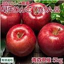 早生りんご(赤) A品5kg箱(14~23玉) 特別栽培 (青森県 田村りんご農園) 産地直送