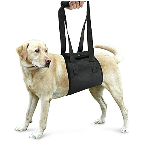 ペット用歩行補助ハーネス 犬 ハーネス 介護ハーネス 老犬の介護に!脚の怪我に!小型犬 中型犬 大型犬 (Mサイズ, ブラック)