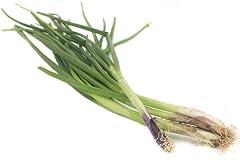Fresh Produce Spring Onion, 200g