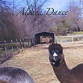 Alpaca Dance