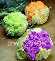 8:100ピースブラックカリフラワーの種子非gmo中国野菜の種子ホームガーデン鉢植え植物おいしいdiy植物