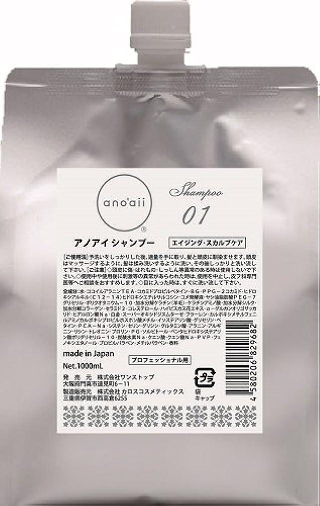 振動させる流す代替anoaii (アノアイ) エイジングスカルプシャンプー 1000ml レフィル