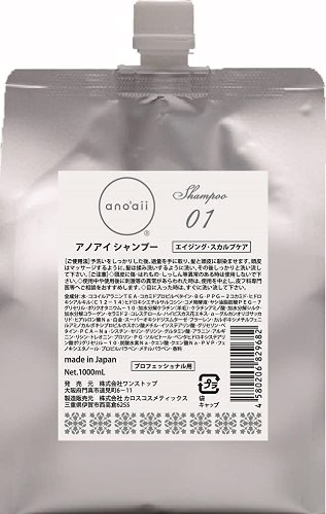 シート武器合併anoaii (アノアイ) エイジングスカルプシャンプー 1000ml レフィル