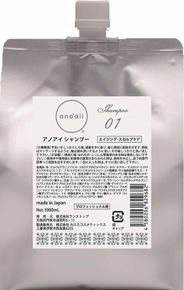 記念碑したがってバケットanoaii (アノアイ) エイジングスカルプシャンプー 1000ml レフィル