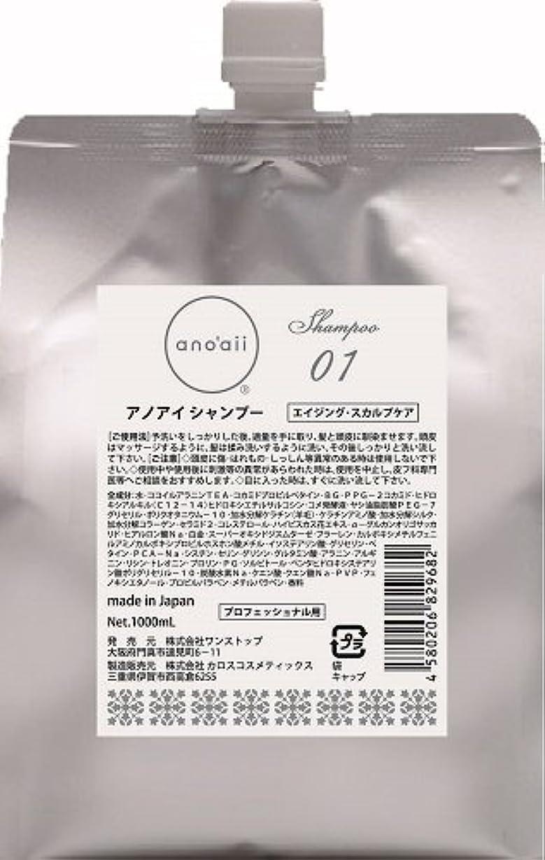 ミニチュア構成するにじみ出るanoaii (アノアイ) エイジングスカルプシャンプー 1000ml レフィル