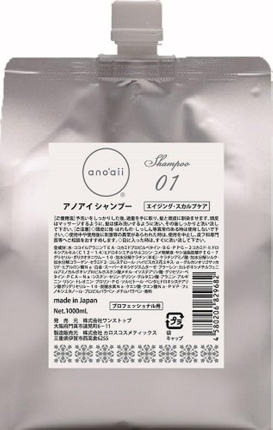 過ちテーブルを設定する懐疑論anoaii (アノアイ) エイジングスカルプシャンプー 1000ml レフィル