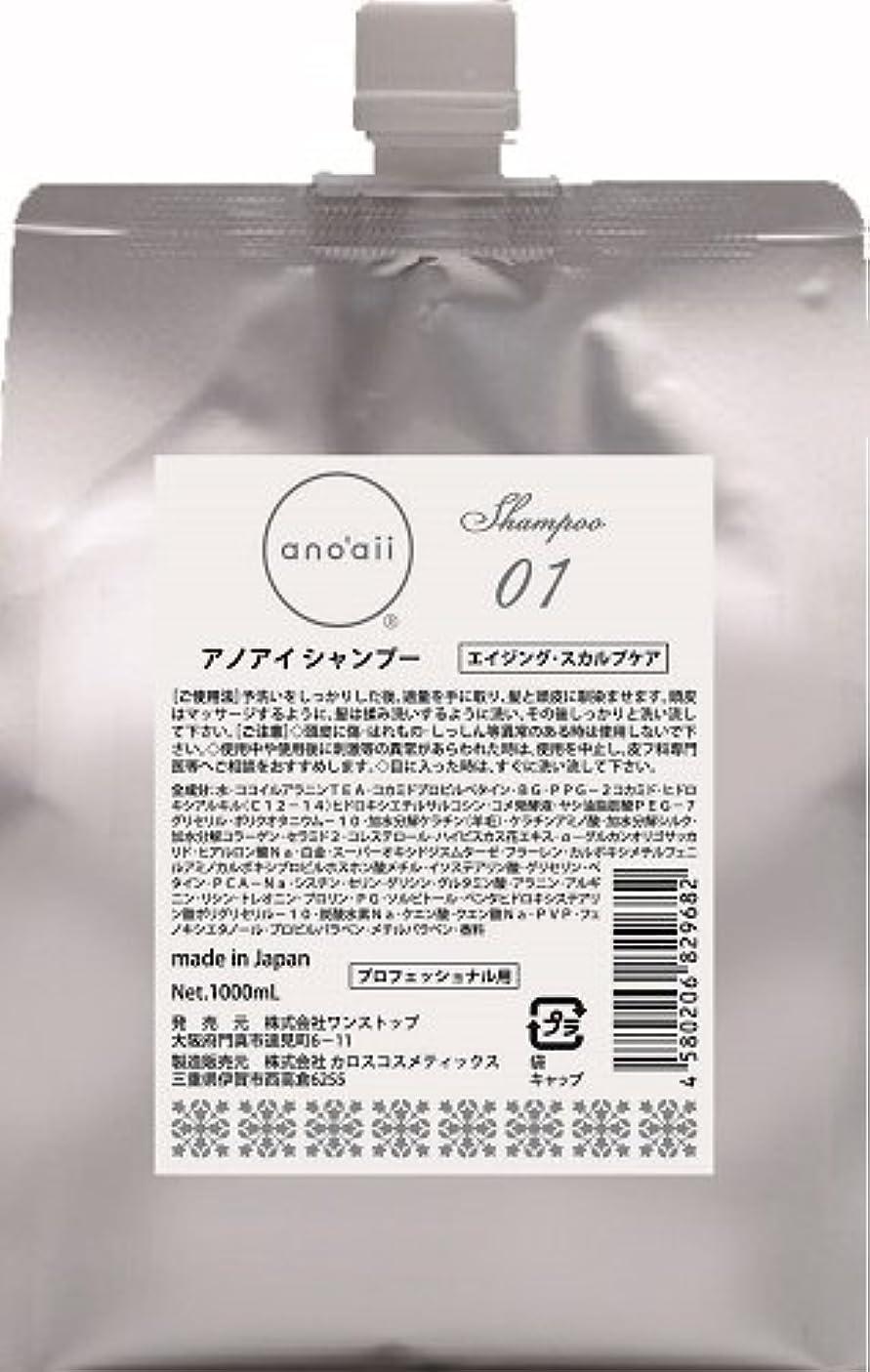 ひらめきジャケットふりをするanoaii (アノアイ) エイジングスカルプシャンプー 1000ml レフィル