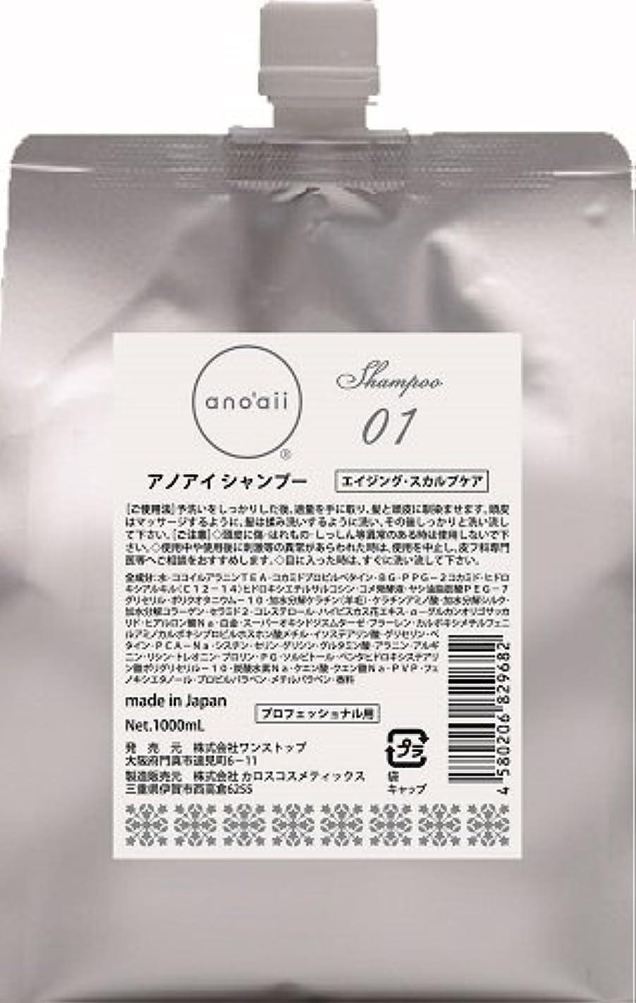 雪だるまを作る大理石鑑定anoaii (アノアイ) エイジングスカルプシャンプー 1000ml レフィル