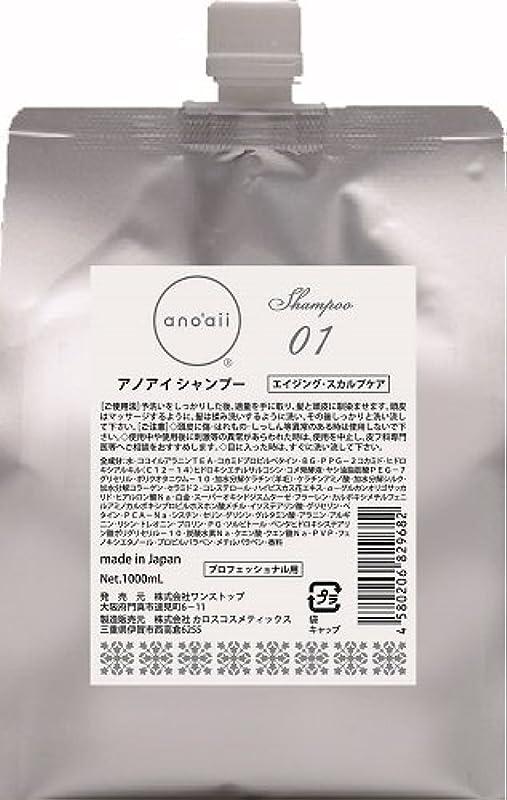 ミッション抽象化欠陥anoaii (アノアイ) エイジングスカルプシャンプー 1000ml レフィル
