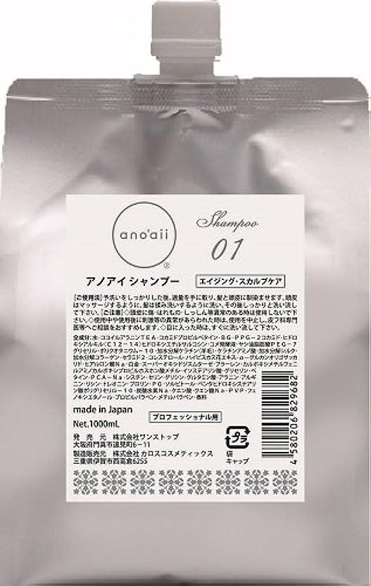 契約する塩辛い歯痛anoaii (アノアイ) エイジングスカルプシャンプー 1000ml レフィル