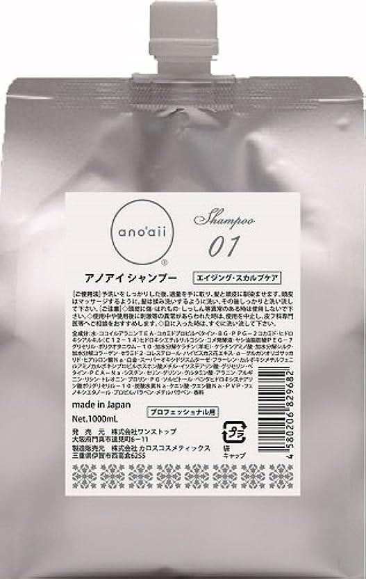 ベスト厳密に眉をひそめるanoaii (アノアイ) エイジングスカルプシャンプー 1000ml レフィル