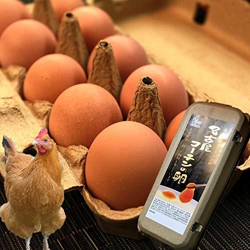 名古屋コーチンの卵(20個入り) 高級ブランド卵 養鶏場直送