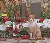 NHK BSプレミアム 「岩合光昭の世界ネコ歩き」 ORIGINAL SOUNDTRACK 2 画像