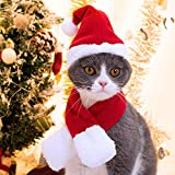 Namsan Cat Christmas Costume Cat Santa Hat with Christmas Scarf Dogs Christmas Outfits Puppy Xmas Outfit, Red
