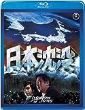 【ネタバレ】 映画「日本沈没(1973年版)」