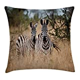 Wildlife Decor Throw Pillow Cushion Cover, Kenya with Zebras in the High Bushes Looking at the Camera Striped Unique Animal, Decorative Square Accent Pillow Case, 18 X18 Inches, Multi