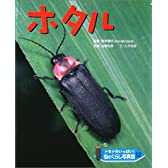 ドキドキいっぱい!虫のくらし写真館〈12〉ホタル
