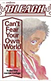 BLEACH Can't Fear Your Own World 2 (JUMP  jBOOKS)