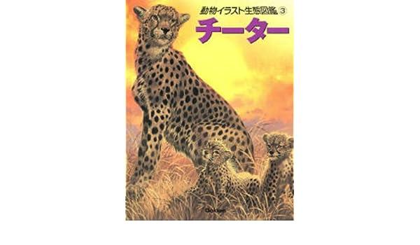 動物イラスト生態図鑑 3 チーター 伊藤 年一 ジョンフランシス 本