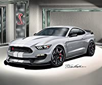 2015 – 2016 Ford Mustang Shelby gt350 R – Avalancheグレー – アートプリントポスターby Artistダニー・Whitfield 24 x 36