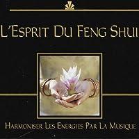 L'esprit Du Feng Shui