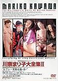 川奈まり子大全集II 【LHD-29】 [DVD]
