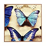 Deny Designs Chelsea Victoria Blue Blue Framed Wall Art Small 12x 12 [並行輸入品]