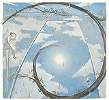 『ナポレオンフィッシュと泳ぐ日』 限定編集版(Limited Edition)(DVD付) 画像