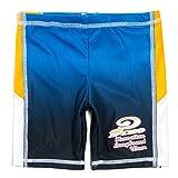 PIKO(ピコ) キッズ・ジュニア ブランド水着 男の子用サーフパンツ 724011 sw2064 (120cm, ブルー)