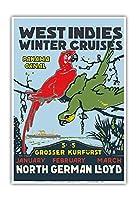 西インド諸島 - ウィンタークルーズ - パナマ運河 - 北ドイツロイド(NDL) - ビンテージな遠洋定期船のポスター c.1913 - アートポスター - 33cm x 48cm