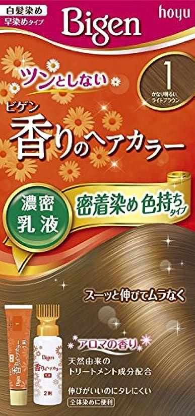 ユーモラス欠員強いますホーユー ビゲン香りのヘアカラー乳液1 (かなり明るいライトブラウン) 40g+60mL ×6個