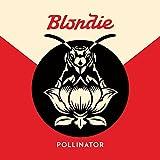 Pollinator 画像
