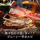 肉のあおやま やわらかジューシー! アメリカ産 味付き牛カルビ 500g(焼肉 肉 焼き肉 バーベキュー BBQ バーベキューセット)