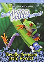 Really Wild Animals: Totally Tropical Rain Forest [DVD] [Import]