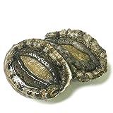 黒帯 活蝦夷鮑 北海道 天然 蝦夷 あわび 刺身 活 黒アワビ 特大 大サイズ 500g 5-7個入
