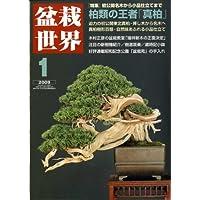 盆栽世界 2009年 01月号 [雑誌]