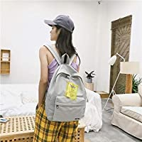 ZHANGYOUDE Double Shoulders School Bag Travel Backpackage Bag (Black) (Color : Grey)
