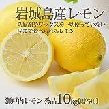 瀬戸内レモン 秀品 10kg 国産レモン 愛媛 岩城島 いわぎ島 贈答 お歳暮