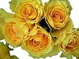 マレーラ 【イエロー】 20本 ◆バラの花束◆