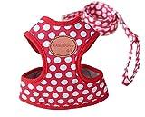 Rant Bell(ラント ベル) 小型犬 ハーネス リード セット ドット柄 かわいい 肉球 (赤 L)