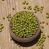 阳光绿豆(特級) ビーンズ 乾燥豆 約390g