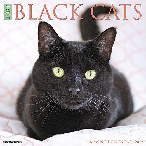 Just Black Cats 2019 Calendar