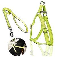 Jeerui 牽引ロープ ハーネス ペット用品 伸縮リード/Lead 小中大型犬用リード 反射光 調節可能 お出かけ用 伸縮できる size L (イエロー)