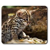 快適なマウスマット - 赤ちゃんヒョウ猫の子猫23.5 X 19.6センチメートル(9.3 X 7.7インチ)コンピュータ&ノートパソコン、オフィス、ギフト、ノンスリップベース用 - RM14599